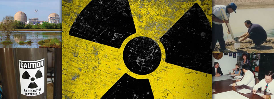Nuclear Industry services